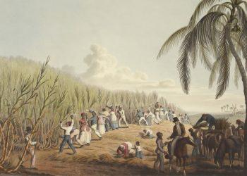 """Formação """"Colonialismo vs. Pós-colonialismo: Desconstruindo mitos da narrativa histórica"""